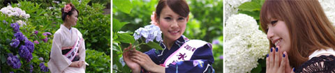 保和苑撮影会2012