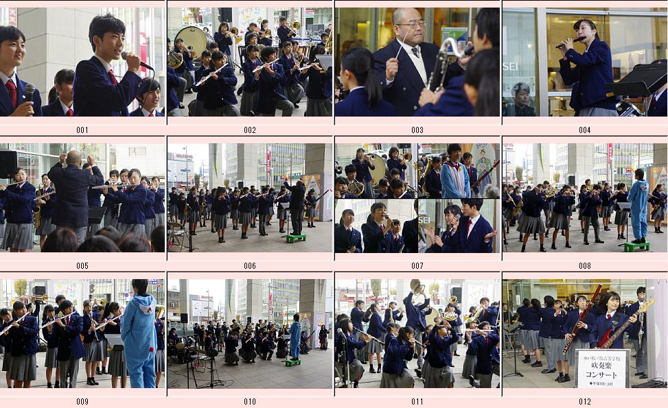 高校 ノ 牧 水戸 桜